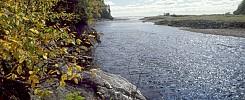 Big Salmon River