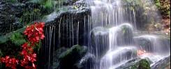 Fuller Falls
